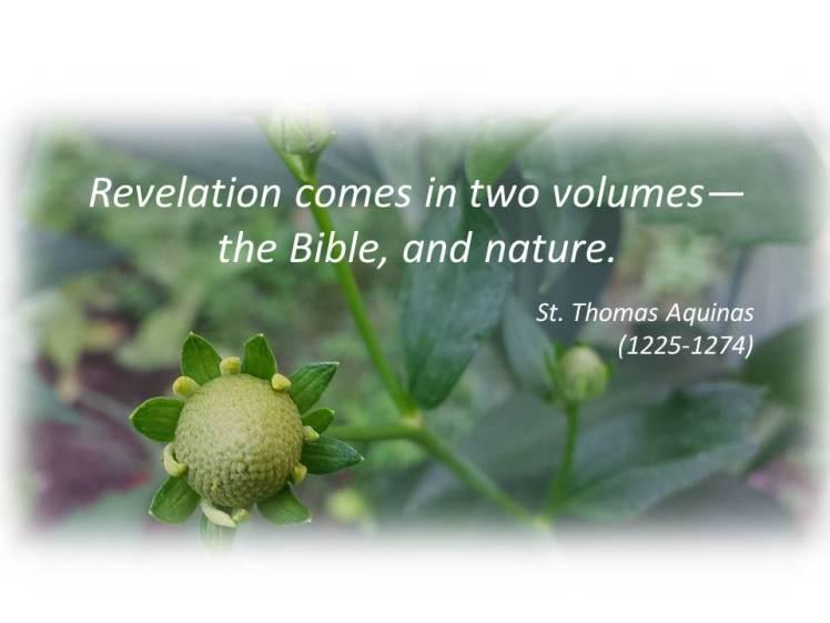 Aquinas revelation